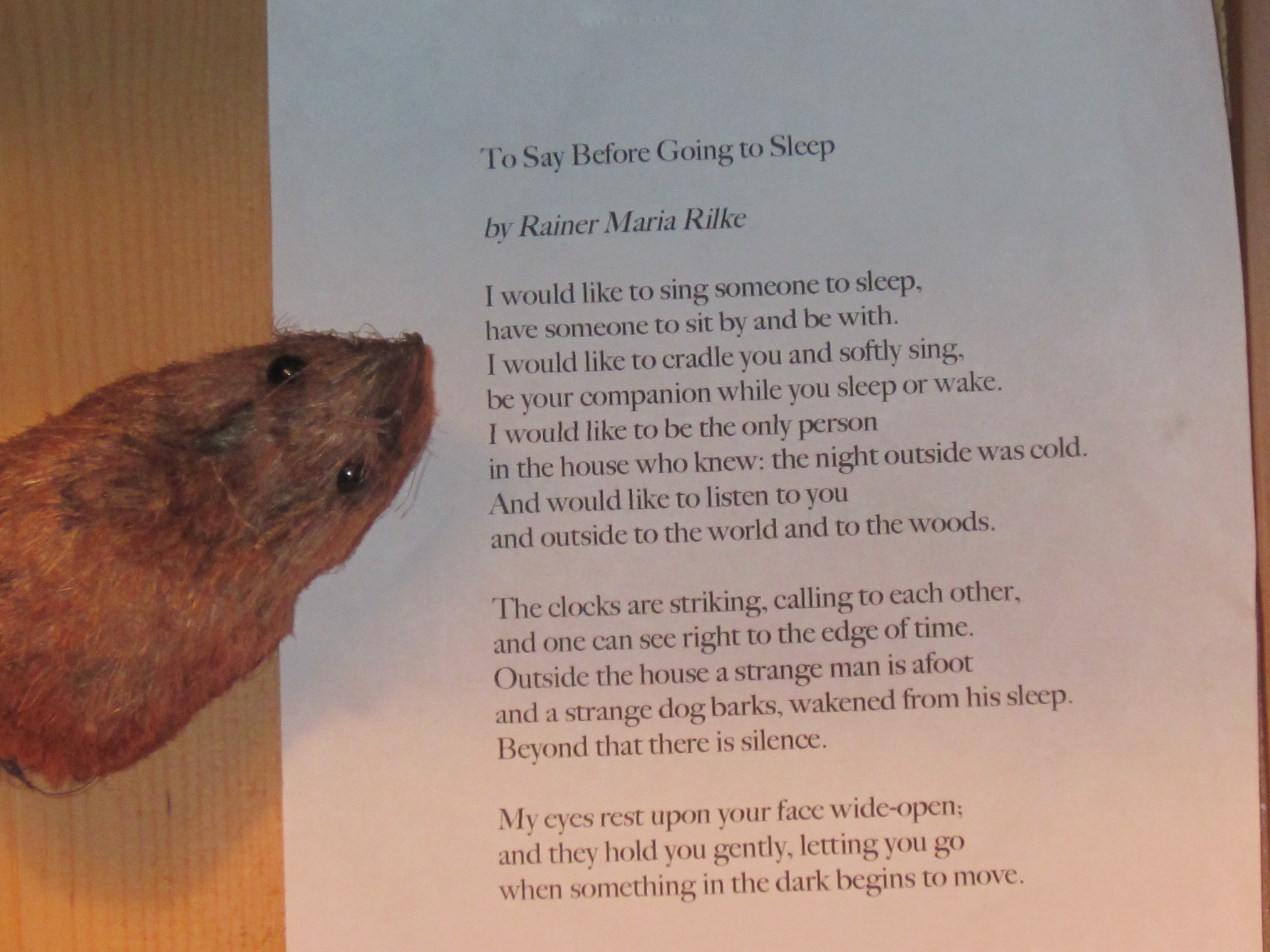 A Dog S Mother S Day Poem