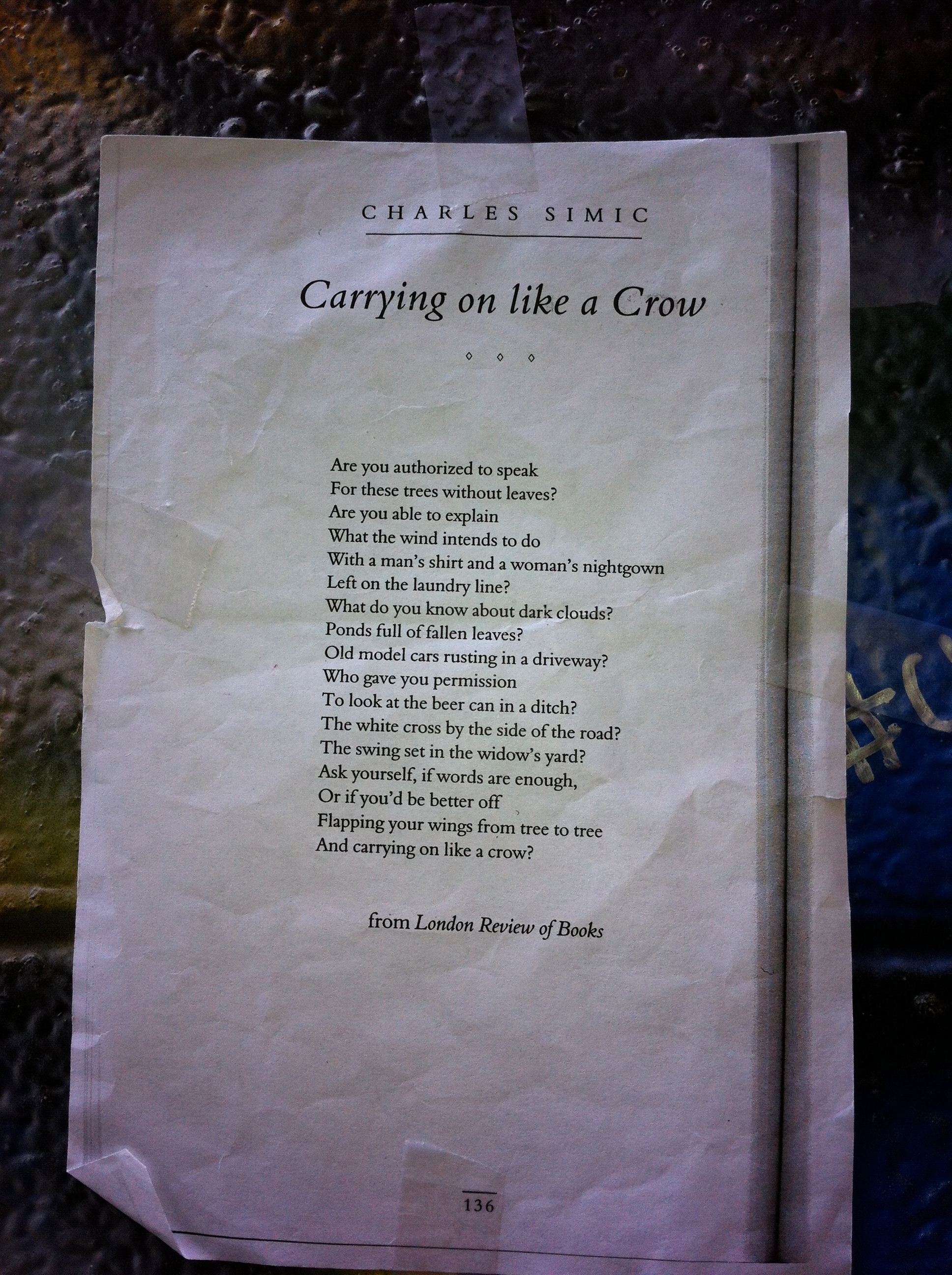 Carrying on Like a Crow | Poem Elf