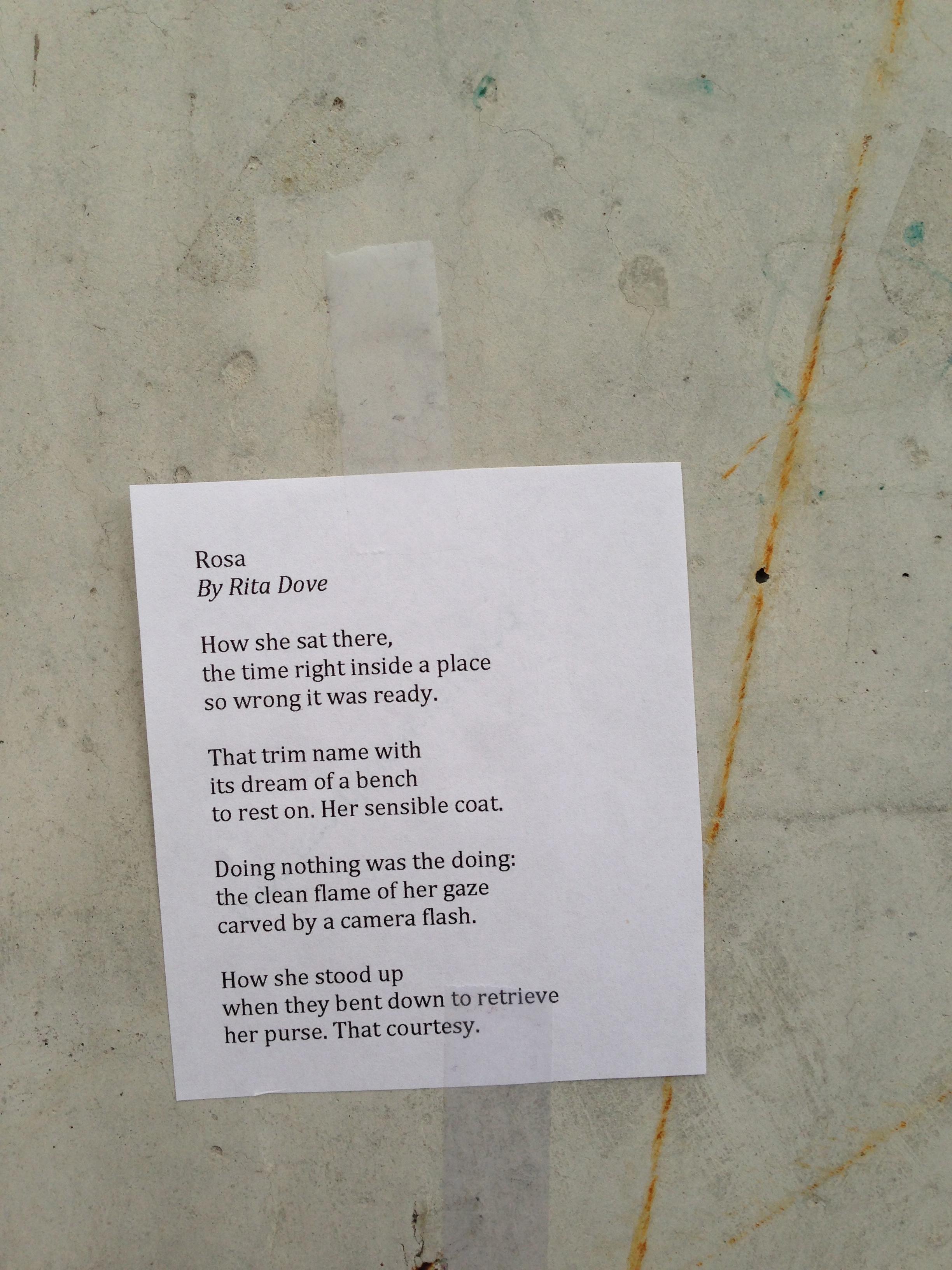 Rosa Poem Elf
