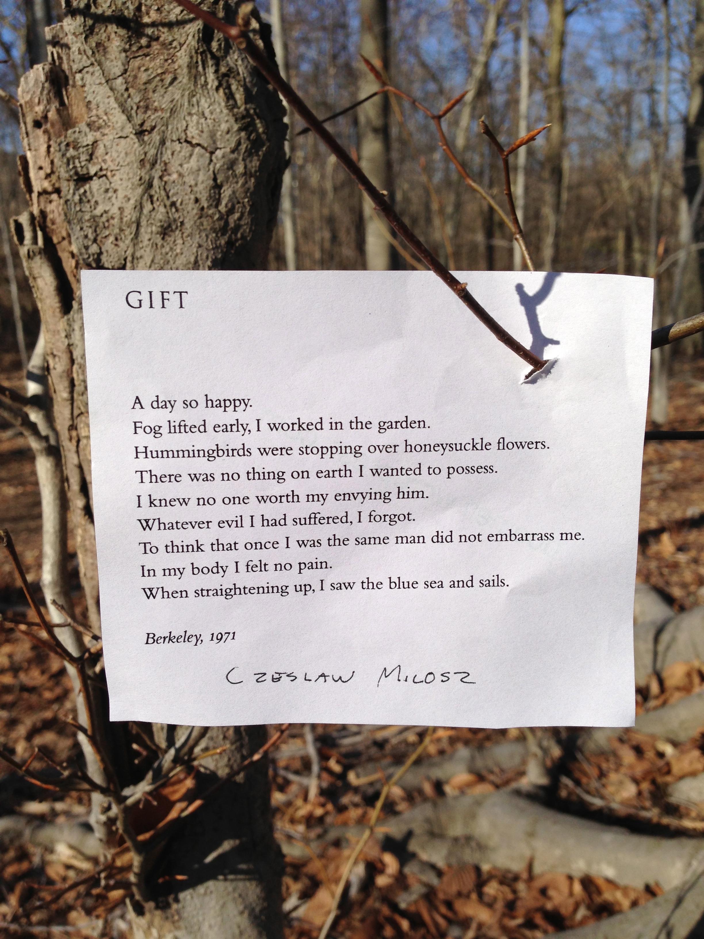 javier galvez poem elf