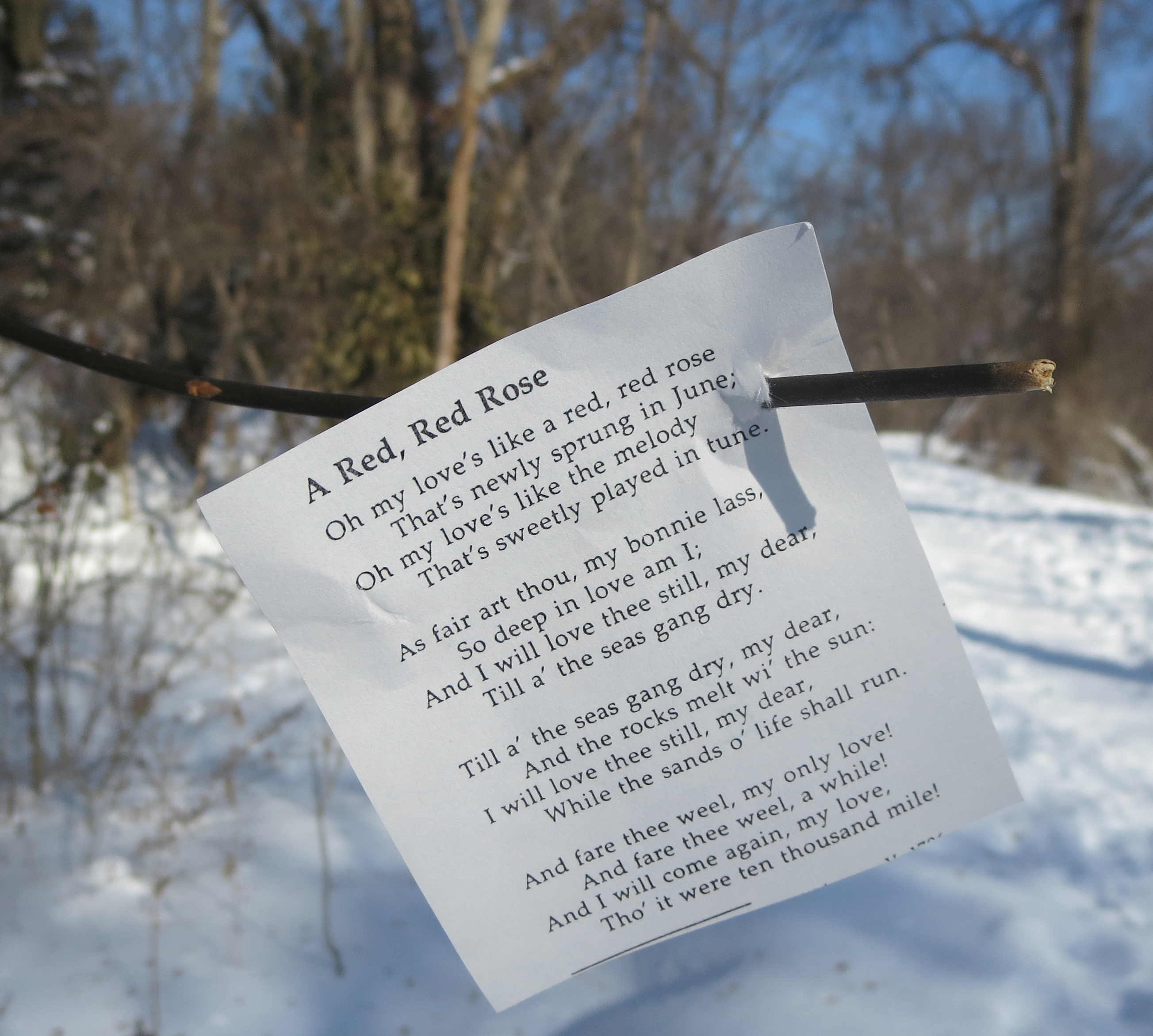 Poems last longer than chocolates | Poem Elf